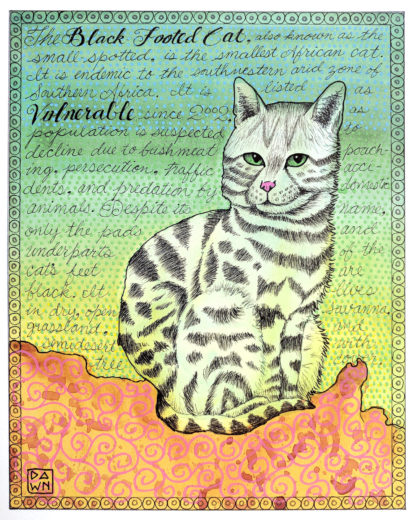 Black-footed Cat in watercolor, mixed media, completed