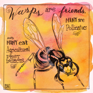 Wasps are friends. Many are pollinators and many eat agricultural pest insects