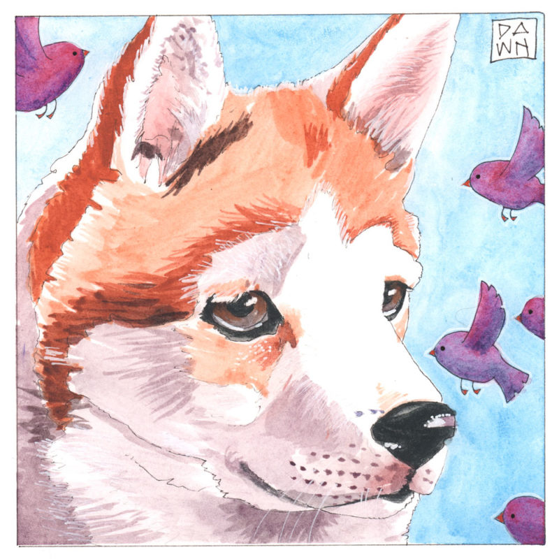 Josie and the Birds dog ink painting