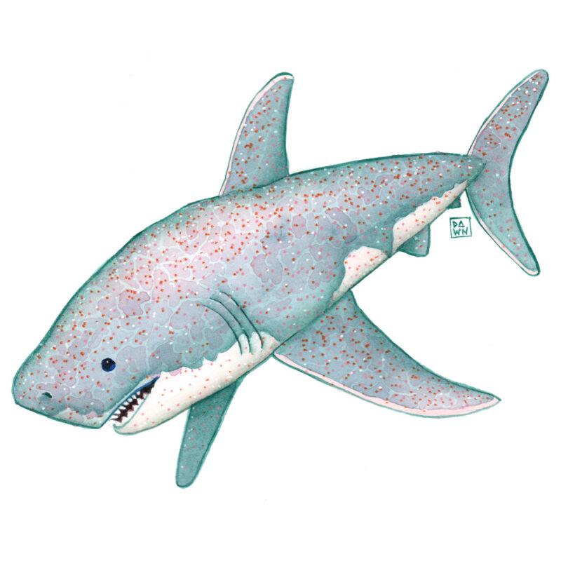 """Cupcake"" great white shark watercolor painting"