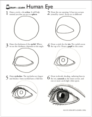 How to Draw a Human Eye Worksheet front